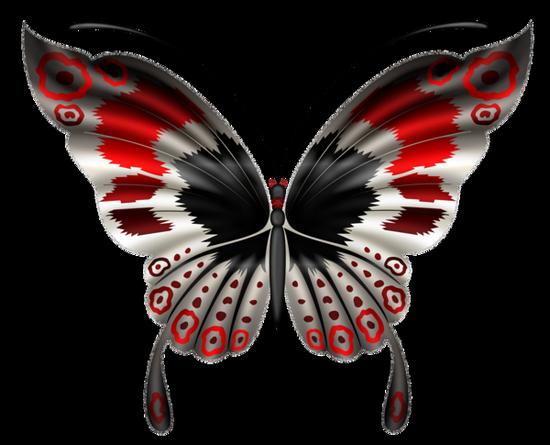 tubes_papillon_tiram_128
