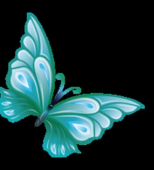 tubes_papillon_tiram_177