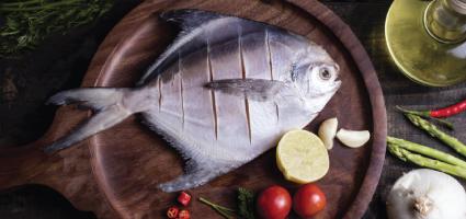 Tacskey Fish