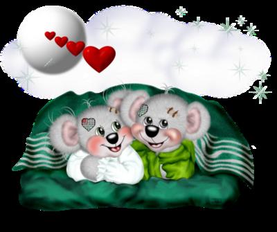 teddy_saint_valentin_tiram_267