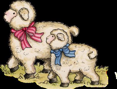 mouton_tiram_86