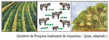 Biogeografia - UNESP Fazenda