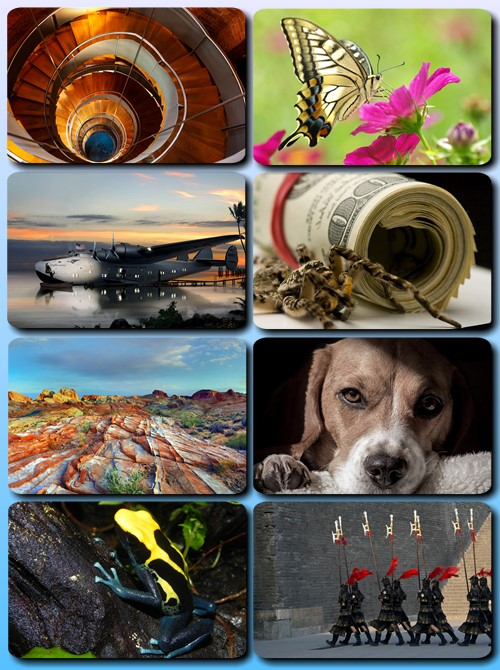 Beautiful Mixed Wallpapers Pack 744