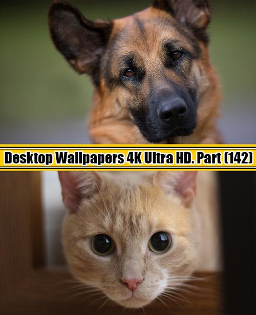 Deskop Wallpapers 4K Ultra HD. Part 142