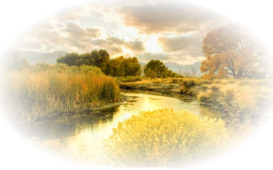 paysage_tiram_712