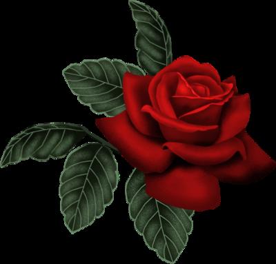tubes_fleurs_saint_valentin_tiram_286