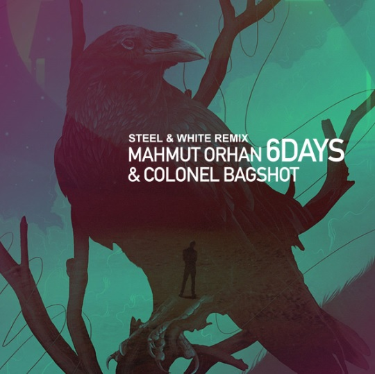 Mahmut Orhan & Colonel Bagshot - 6 Days (Steel & White Extended Remix)