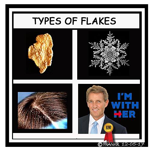 FLAKES_jeff.jpg