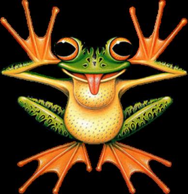 grenouille_tiram_117