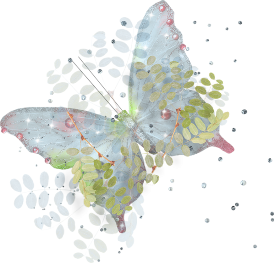 tubes_papillon_tiram_674