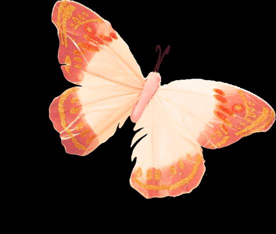 tubes_papillon_tiram_537