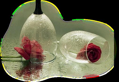 tubes_fleurs_tiram_820