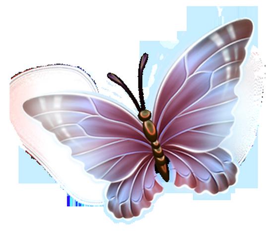 tubes_papillon_tiram_107