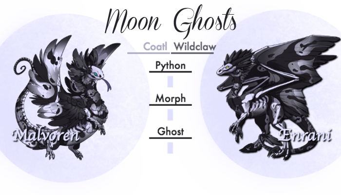 Moon_Ghosts_Card.png