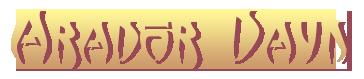 logo_arador_dayn.png
