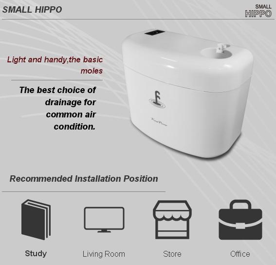SMALL_HIPPO1