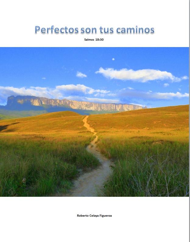 Perfectos son tus caminos