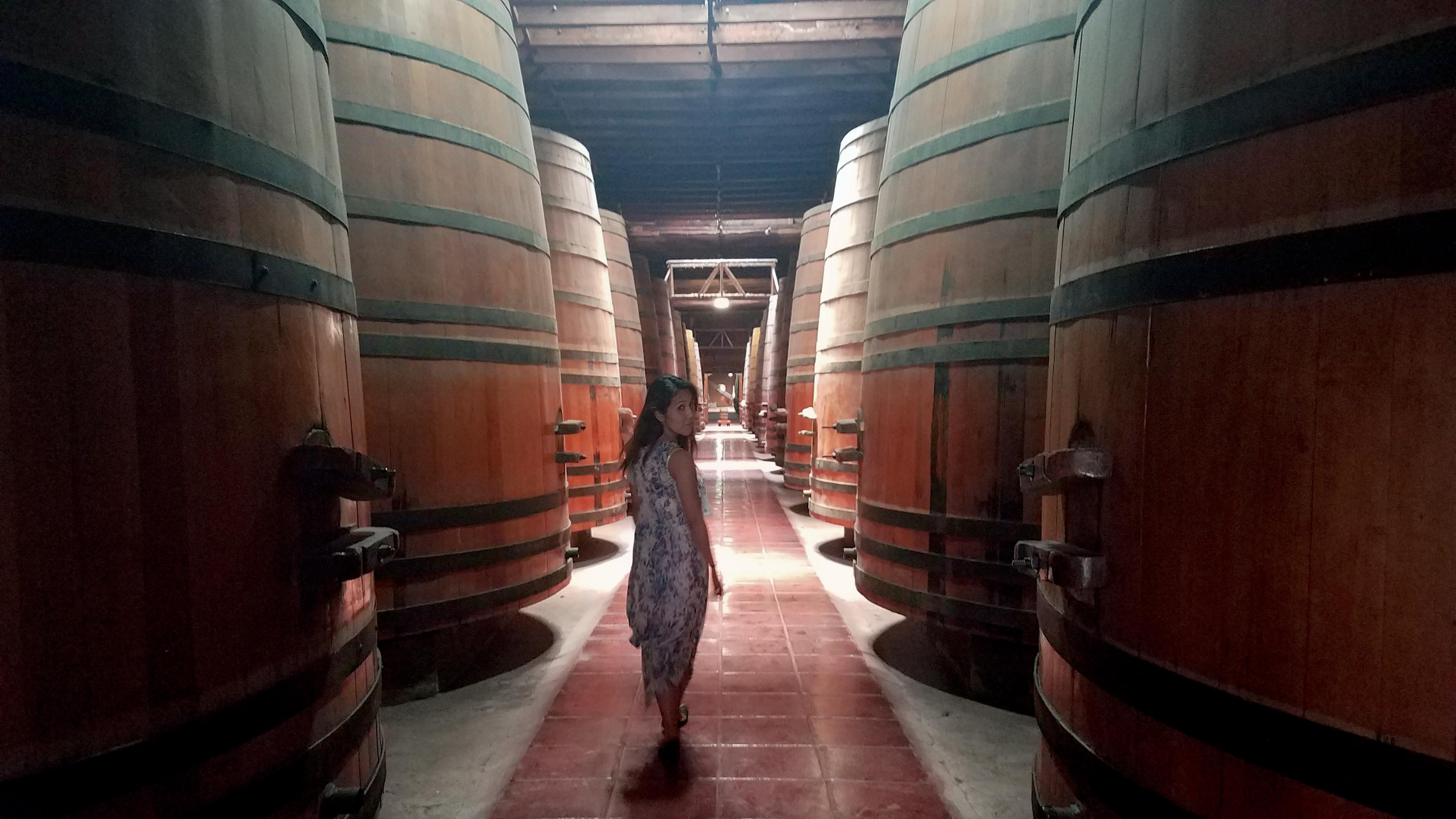 winechile_8