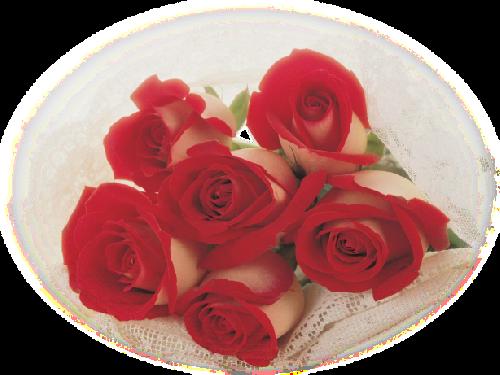 tubes_fleurs_saint_valentin_tiram_63