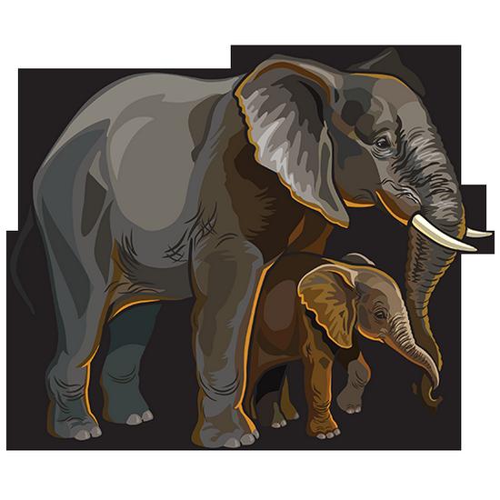 tubes_elephants_tiram_638