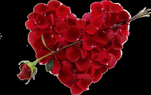 coeur_saint_valentin_tiram_80