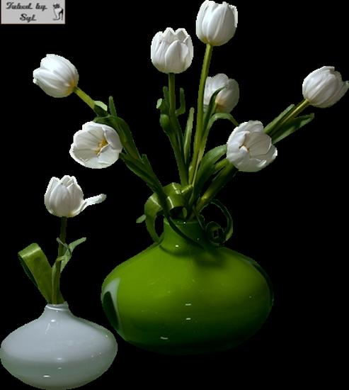 tubes_fleurs_tiram_411