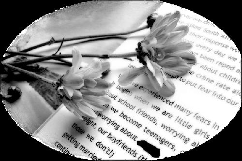 tubes_fleurs_saint_valentin_tiram_75