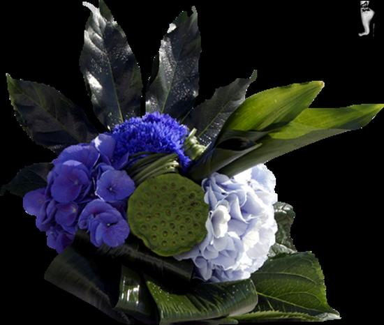 tubes_fleurs_tiram_404