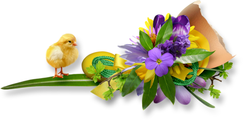 fleurs_paques_tiram_33