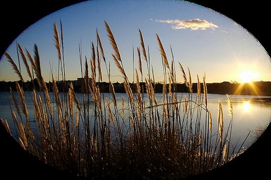 paysage_tiram_812