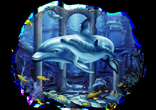 tubes_dauphins_tiram_186