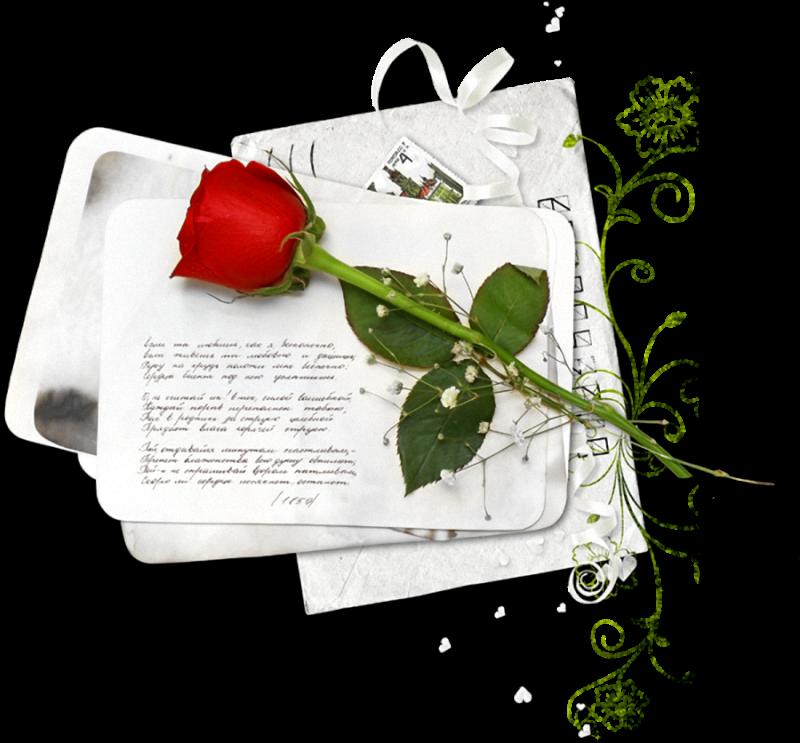 tubes_fleurs_saint_valentin_tiram_209