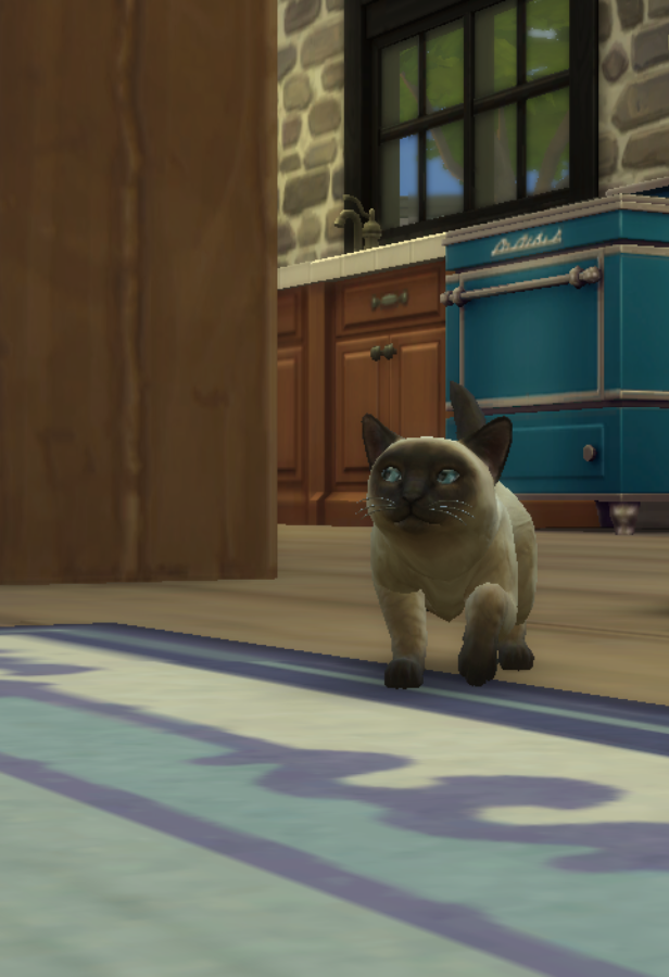 how to change fur on premade kitten sims 3
