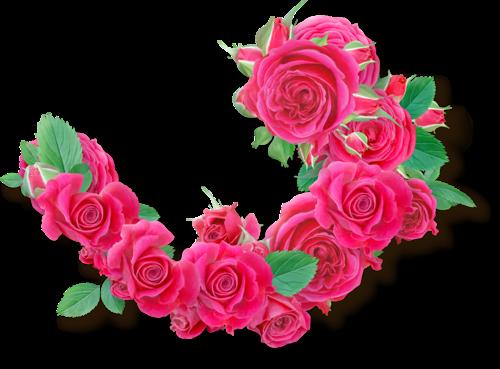 tubes_fleurs_tiram_591