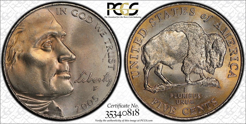 2005 Speared Buffalo Nickel – Wonderful Image Gallery