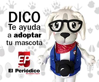 Dico_ads5