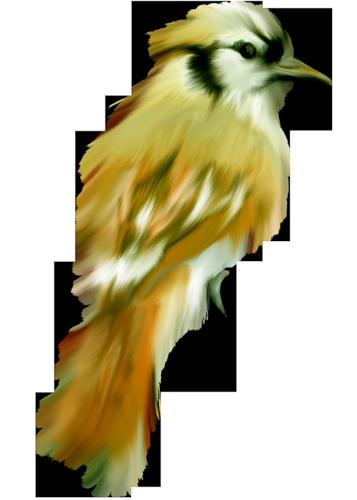 tubes_oiseaux_tiram_51