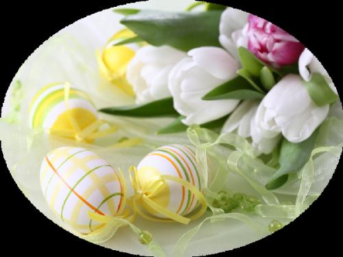 fleurs_paques_tiram_24