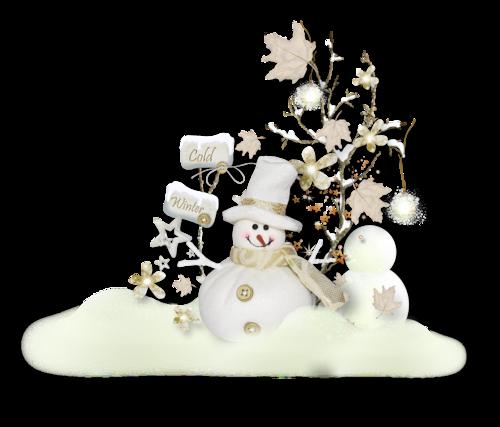 bonhommes-de-neiges-tiram-314