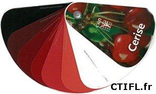 Color cereza, clasificación de la cereza por colores, clave UPOV y clave CTIFL, tabla de colores cereza