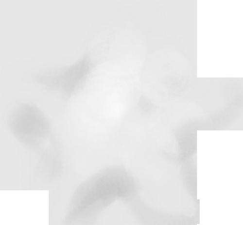 etoile-tiram-270