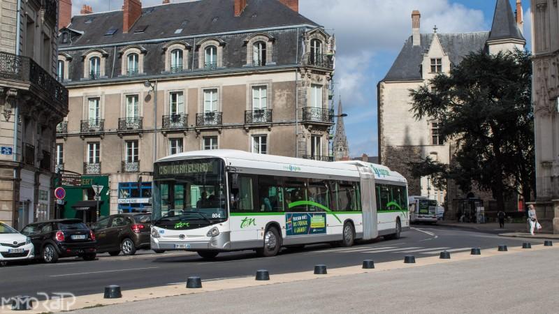 Nantes (44) - TAN - Page 3 IMG_9822