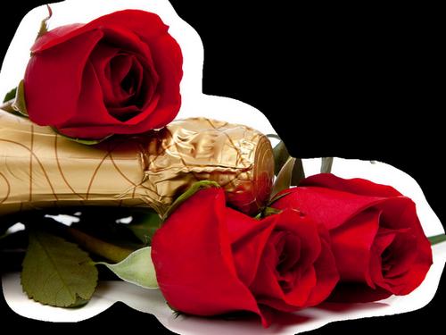 tubes_fleurs_saint_valentin_tiram_248