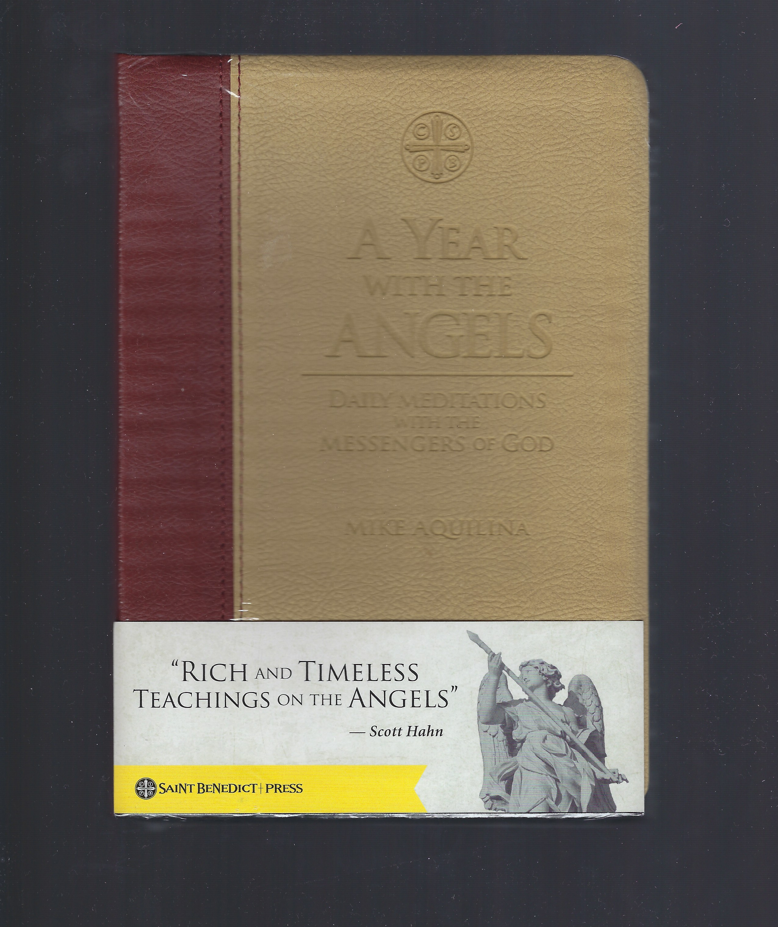A Year With The Angels Daily Meditations with the Messengers of God, Mike Aquilina