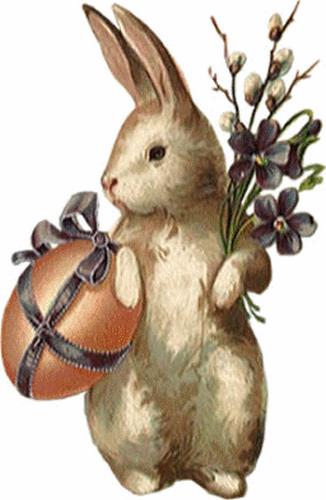 lapins_paques_tiram_137