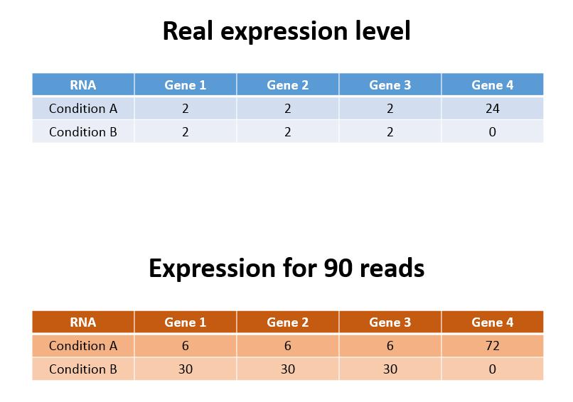 RNA pop