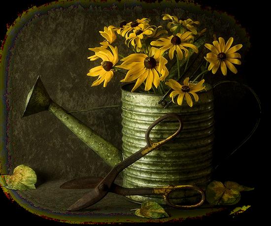 tubes_fleurs_tiram_148
