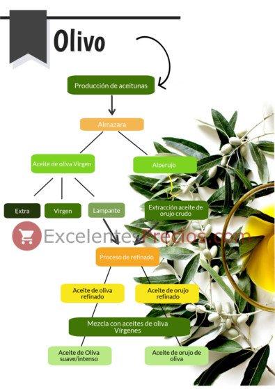 Clases de aceite de oliva, lampante, virgen extra, virgen, orujo, oliva...