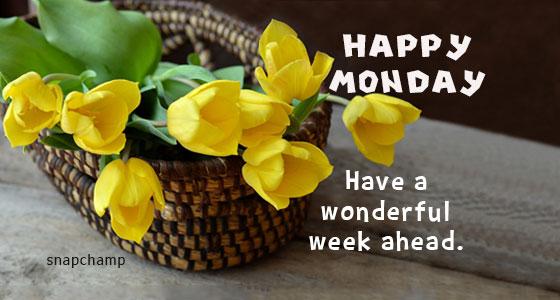 happy_Monday_wonderful_week_flower_basket