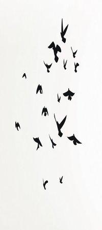 Porter-Leslie, l'ainé des Franklin  Rsz_birds_flock_01_wall2